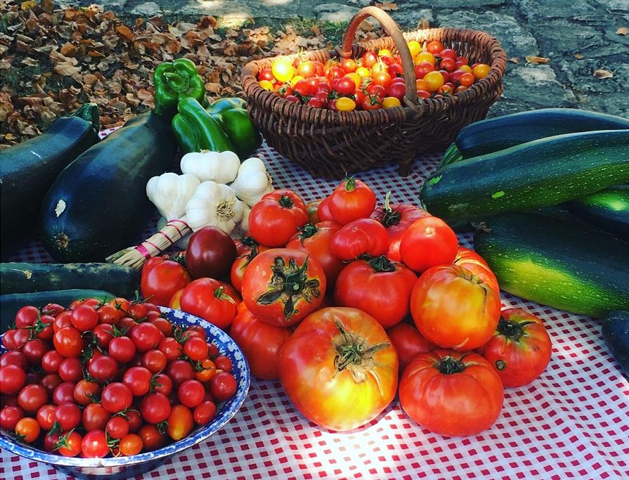 Legumes de la ferme
